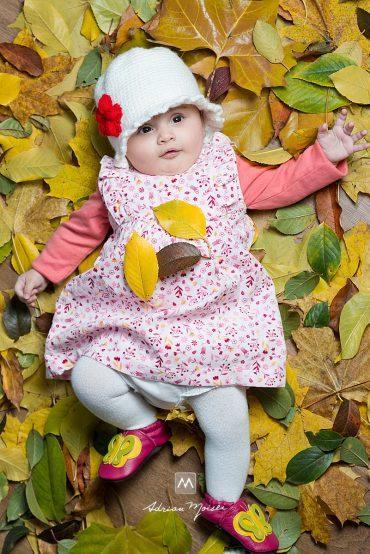 Frunze de toamnă