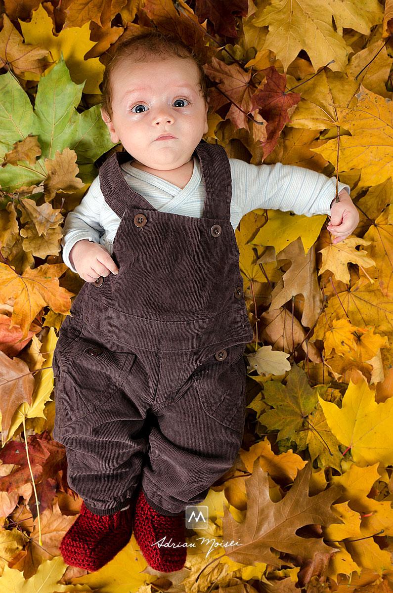 Portret de bebelus pe frunze de toamna uscate
