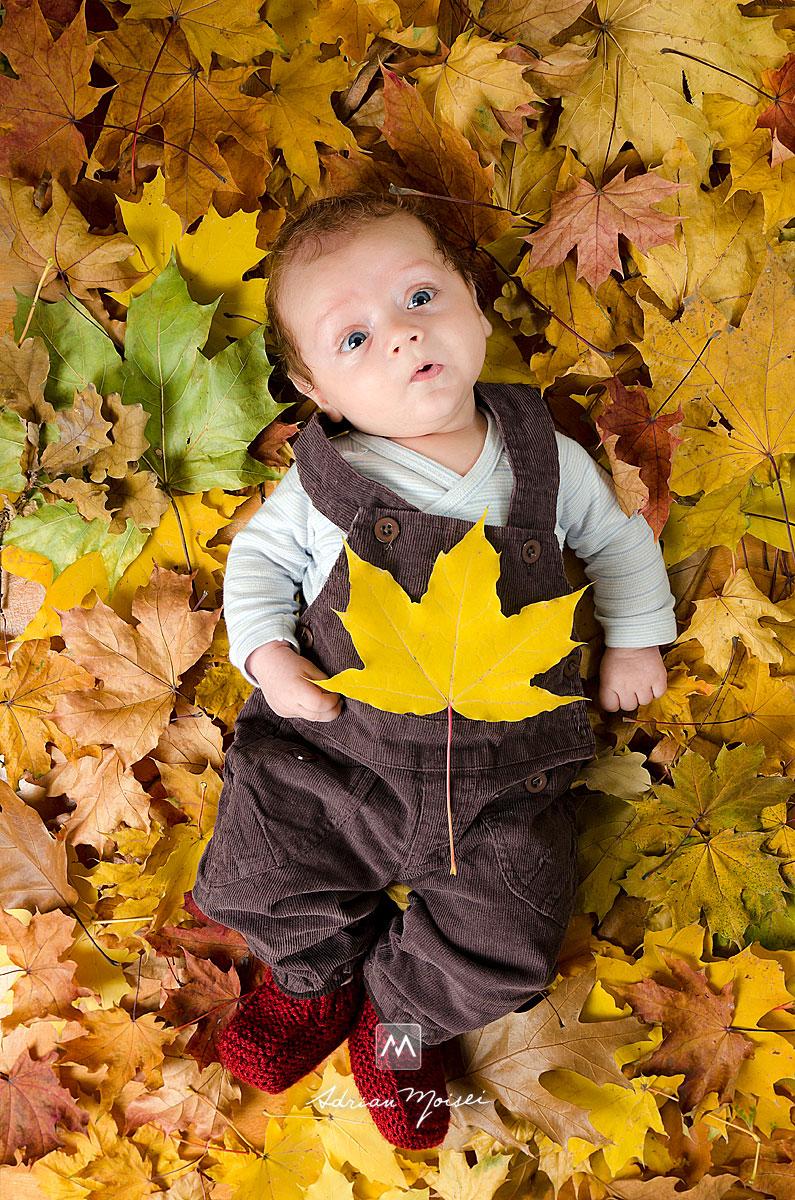 Bebelus cu o frunza de artar in brate, asezat pe multe frunze de toamna