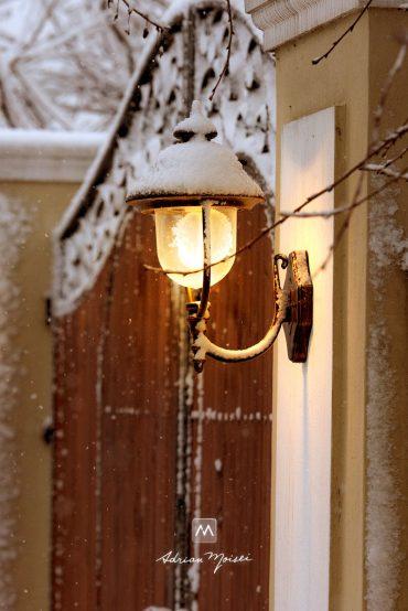 Arhitectură Iași + A venit iarna la studio
