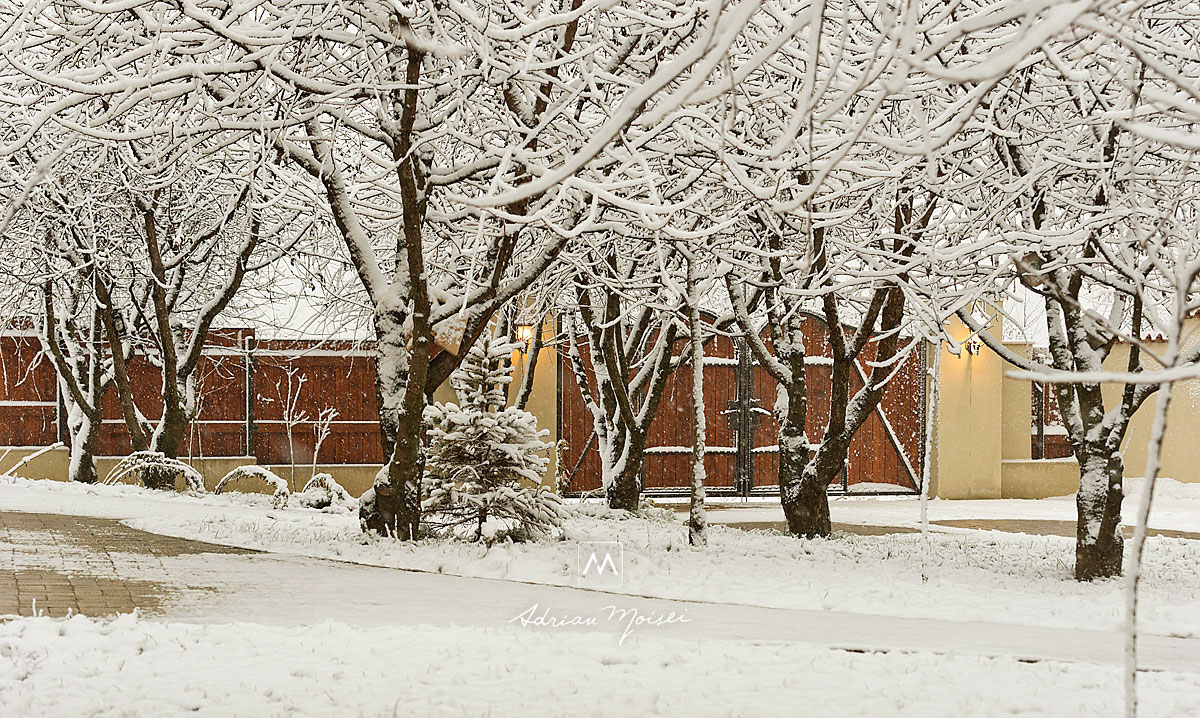 Prima ninsoare din decembrie 2017, Iasi