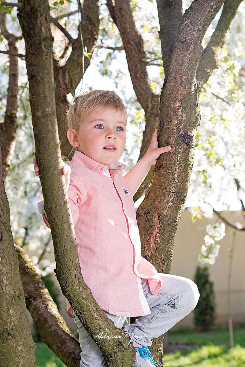 Fotografie cu un copilas blond cu ochi albastri catarat intr-un copac, fotograf de familie Iași