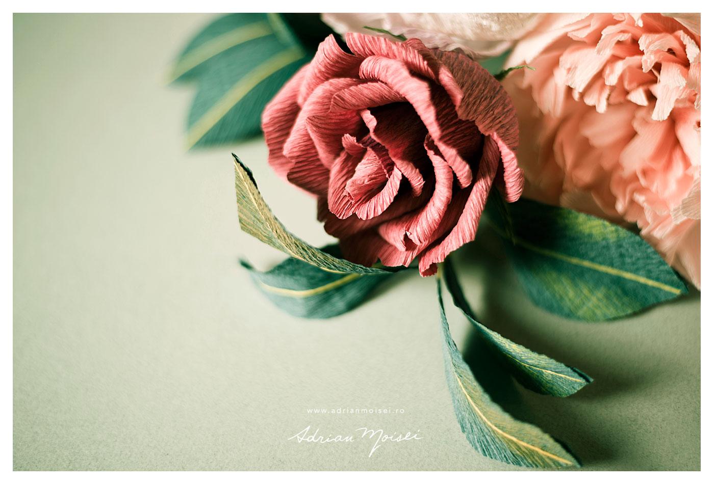 Fotografie de produs Iasi - flori de hartie - Petale de acuarela - foto Adrian Moisei