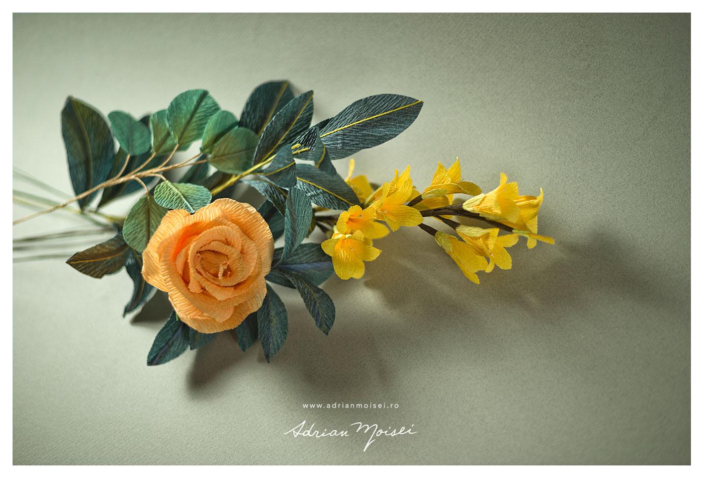 Flori de hartie - Petale de acuarela - fotografie Iasi Adrian Moisei
