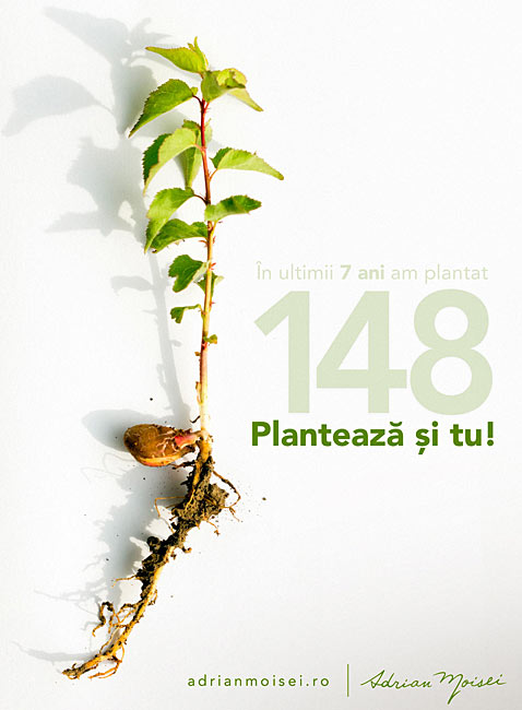 Am plantat 148 copaci! Plantează și tu!